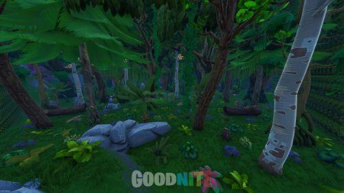 FFA Jungle
